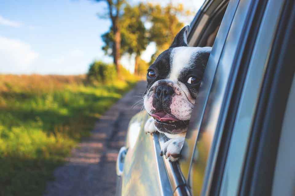 汽車抵押貸款大解析!汽車轉貸到底是甚麼?讓專業典當來告訴你!
